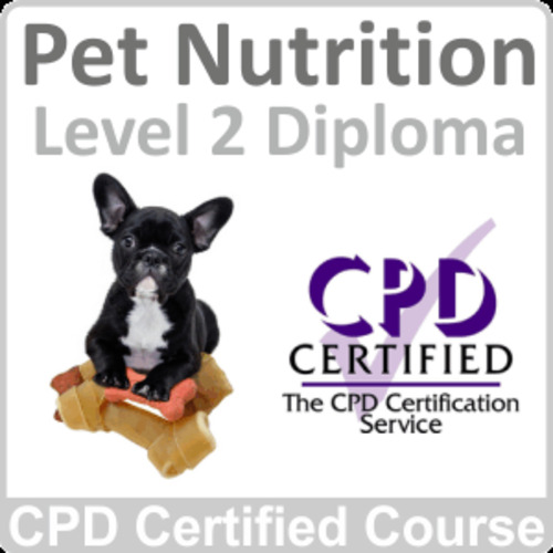Pet Nutrition Level 2 Diploma Online Training Course