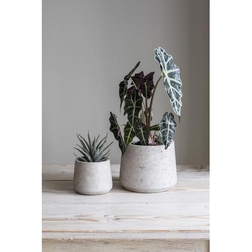 Garden Trading Stratton Tapered Plant Pot Set, Stone